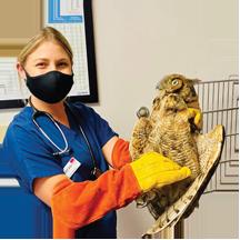 Dr. Sapala and hawk