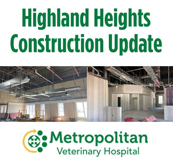 MCE Construction Update